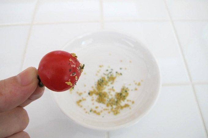 今塩屋佐兵衛の塩 にんにく塩 トマト