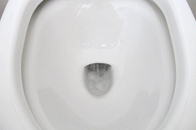 トイレットクリーニングシート トイレ掃除 流す